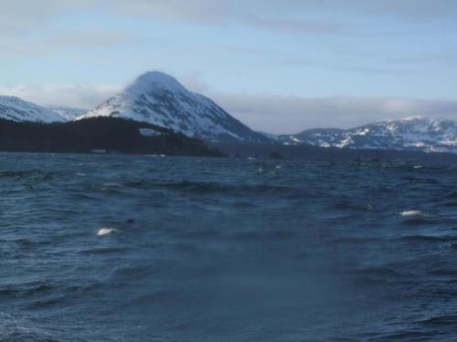 nilus-island